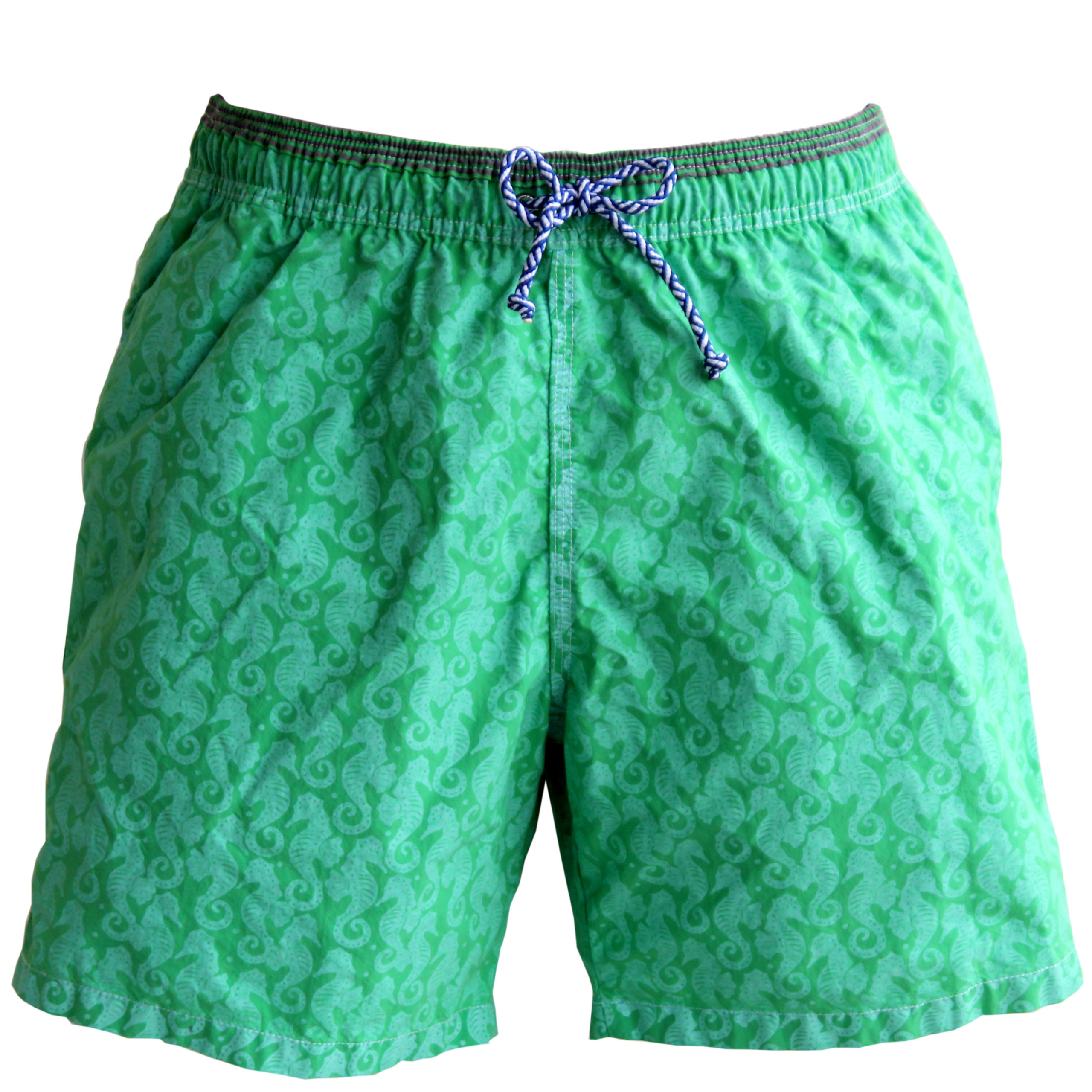 1e83c80f1d green seahorse print swim trunks - Cleverly Wrapped